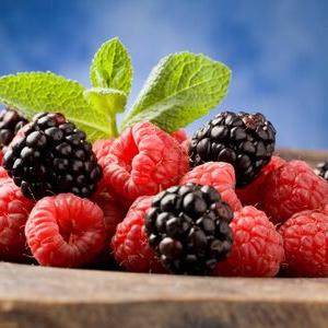 Les Petits Fruits du Gailly